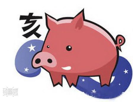 与猪最佳婚配的属相,属猪的人和什么属相的人婚配最好  第1张