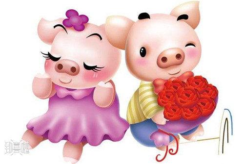 1995属猪女生2021年结婚好吗?  第1张